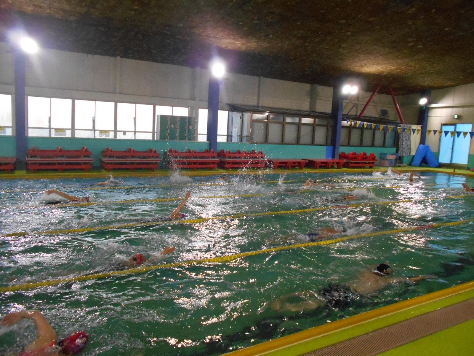①コーチと泳ごう.png