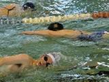 成人水泳教室コース